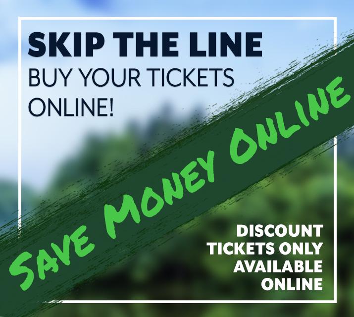 online tickets renfro
